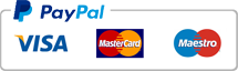 payment PayPal  logo